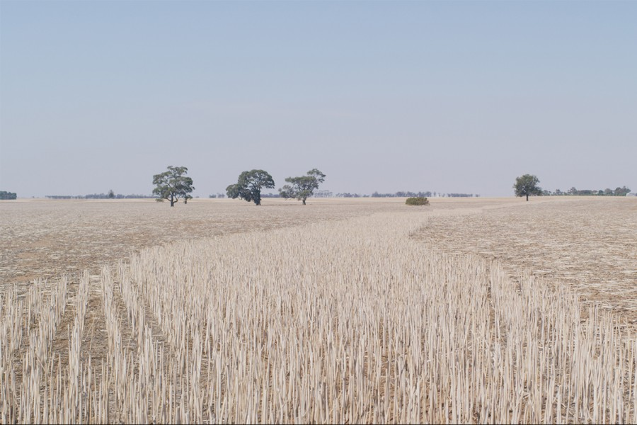 Filmic exploration of histories past and present of Warracknabeal and the surrounding Wimmera Mallee